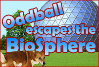 Play Oddball Escapes the Biosphere